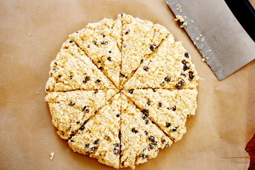 Orange currant quinoa scones from scratch fast recipes meals after lunch at alices tea cup we decided on a whim to visit the museum of natural history where we discovered that the butterfly conservatory was on fandeluxe Epub