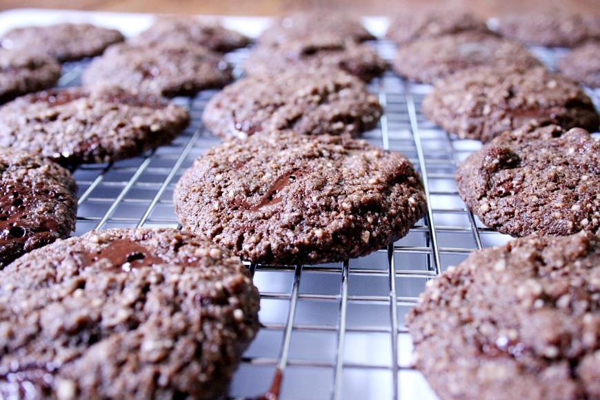 Chocolate Coconut Cookies |Gluten-Free, Vegan
