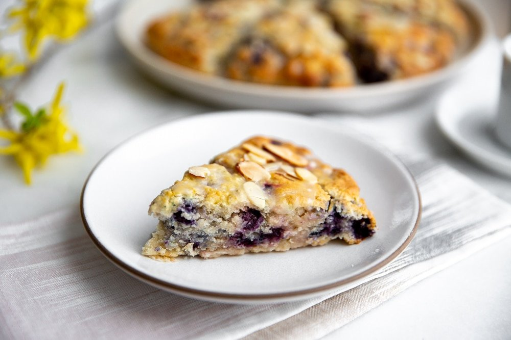Gluten free blueberry scone on a plate.