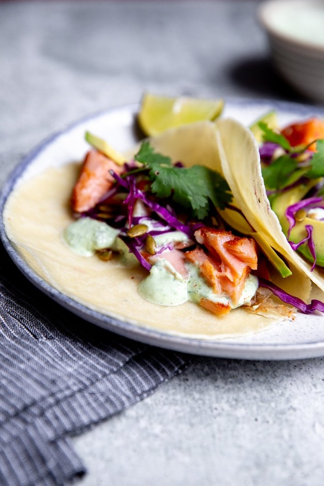 Close up of flaked salmon in tacos.