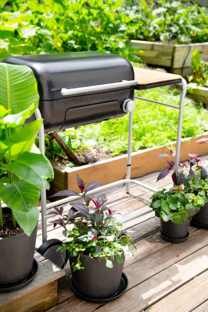 Spark grill on a deck with planters around it.